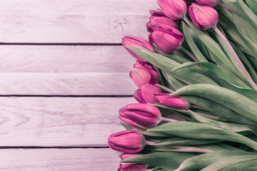 Tulip flowers in romantic colors
