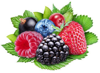 Berries on a white background. File contains clipping paths.