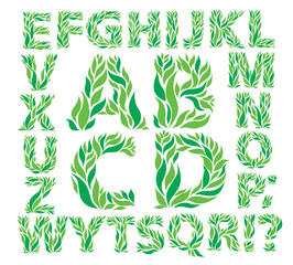 Alphabet green leaves
