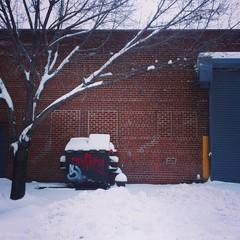 lic post-blizzard