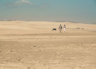 Couple with dog walking on beach with big sand dunes and blue sk