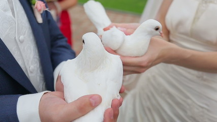Newlyweds are holding pigeons in the hands of