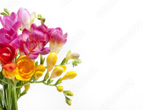 Foto op Aluminium Narcis Beautiful bouquet of colorful freesia