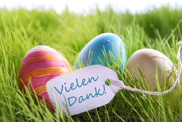 Easter Background With Colorful Eggs Label German Vielen Dank