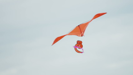 bright color Toy Kite Flying Wind