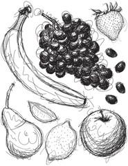 Fruit Medley Sketches