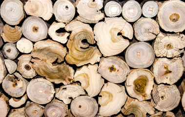 Holz: Brennholz, Holzstapel, Recycling für Möbel :)
