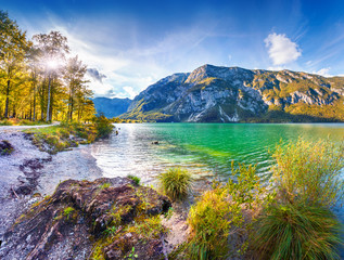 Colorful summer morning on the Bohinj lake