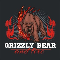 grizzly bear and fire, emblem elements - vector illustration