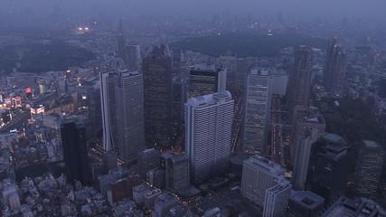 Aerial illuminated Shinjuku Skyscrapers neon Financial District Rail Japan