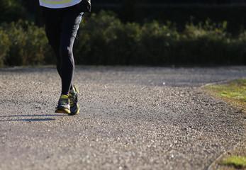 marathon runner during the marathon race outdoors
