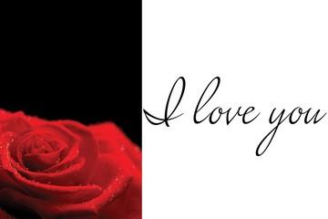Composite image of red rose on black background