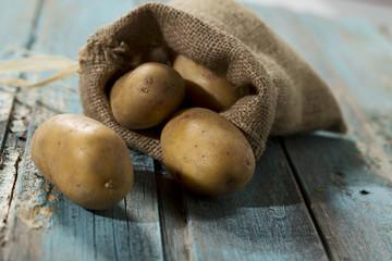 Kartoffeln, Studio