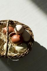 Hühnereier in einem Korb, Studio