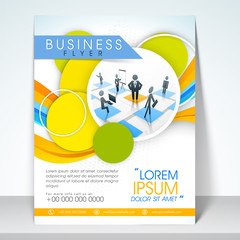 Professional business flyer, brochure or template.