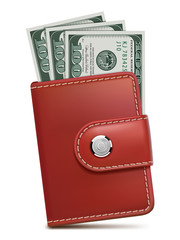 Wallet with money, isolated. Vector illustration