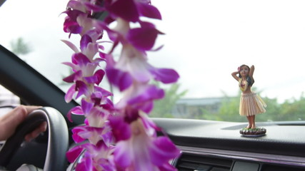 Driving car on Hawaii travel - Hula doll