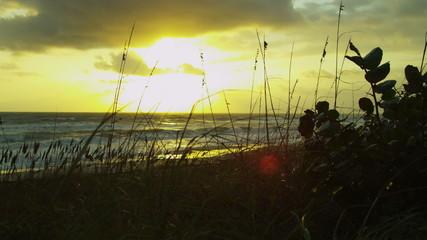 Sunset Over Peaceful Shoreline Ocean Waves