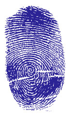blue finger print isolated on white illustration