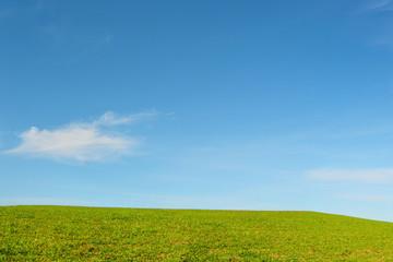Collina con prato verde e cielo azzurro e nuvole - Terra -