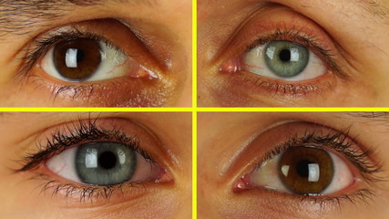 Four Different Human Eyes Look in a Circle