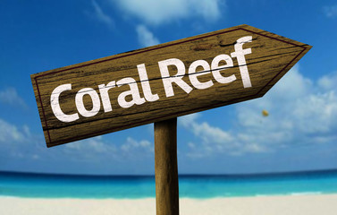 Coral Reef, Australia wooden sign with a beach on background