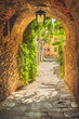Old streets of greenery a medieval Tuscan town. - 76990670