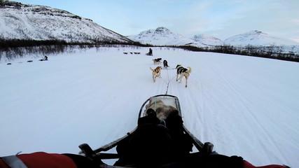 POV Sled dogs pulling sledge handler moving over winter Norway