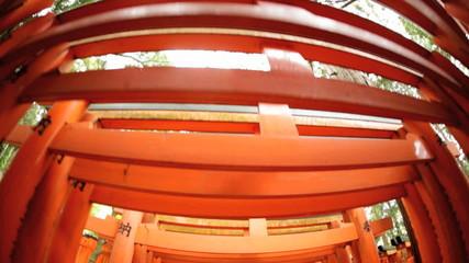 POV Torii gates wide angle  Buddhist temple travel Kyoto Japan Asia