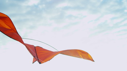 Brightly Colored Toy Kite Flying Wind