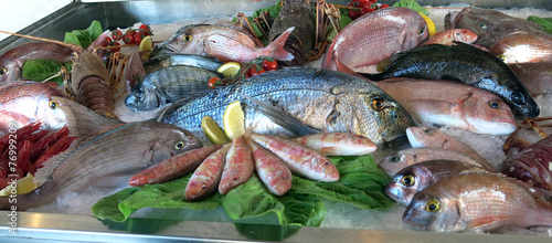great white sea bream many saltwater fish fresh - 76999209