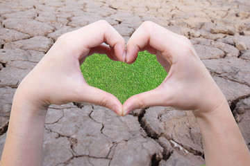hand in heart shape with green field inside on the crack earth