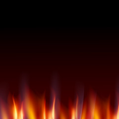 Burn flame fire dark background.