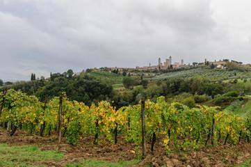 San Giminiano, panorama 2