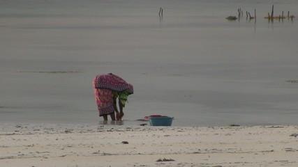 Zanzibar woman washing clothes at seashore in the morning