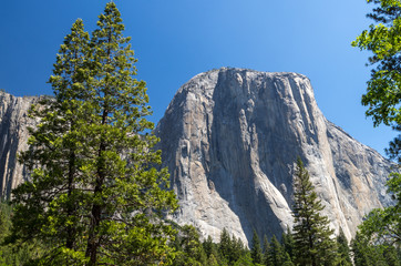 Yosemite National Park - Monolith