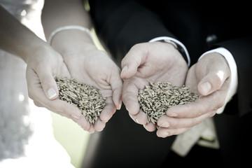 Saat und Ernte