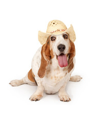Happy Basset Hound Dog Cowgirl