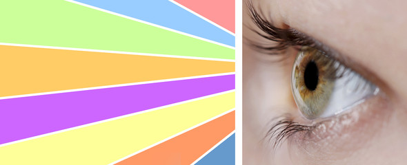 Collage of eye with color palette