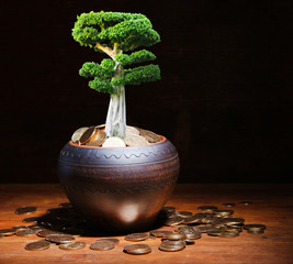Green tree growing in ceramic pot full of coins