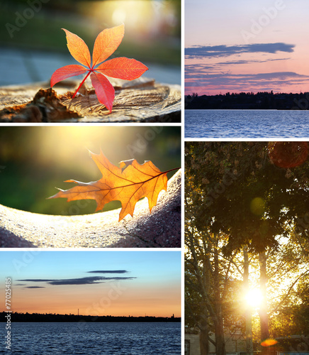 canvas print picture Beautiful nature collage