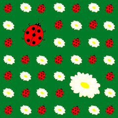 floral background with daisies and ladybirds