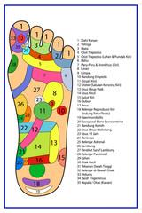 Traditional alternative heal, Acupuncture - Foot Scheme