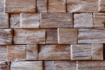 Wood texture, Ecological background