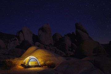 Night Camping in Joshua Tree National Park