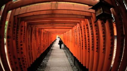 POV Torii gates wide angle Fushimi Inari Taisha shrine  Kyoto