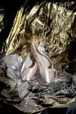 Ballet Shoes - 77050872