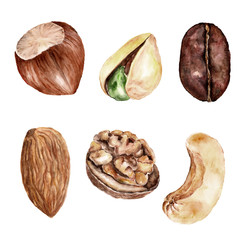 Set with nuts, healthy food. Watercolor illustration