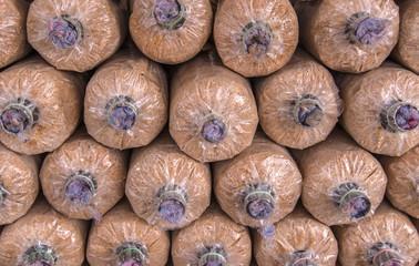 Organic mushroom growing in farm