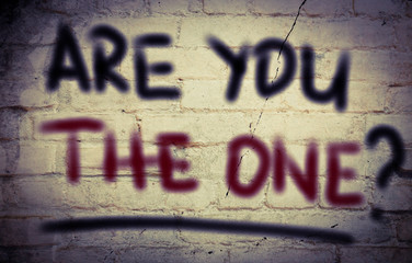 Are You The One Concept